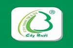 caybuoi2_avatar_637063974390988218